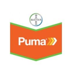 PUMA EXTRA EW144