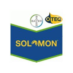 SOLOMON OD