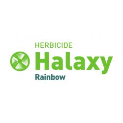 Halaxy